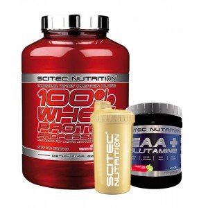 100% Whey Protein Professional + EAAGlutamine + Шейкер