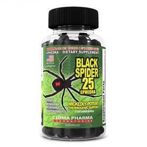 Black Spider 25
